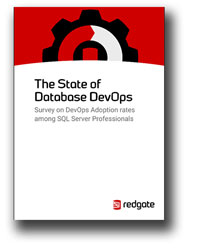 state-of-database-REDGATE-SOFTWARE.jpg